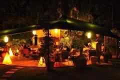 1. Our garden